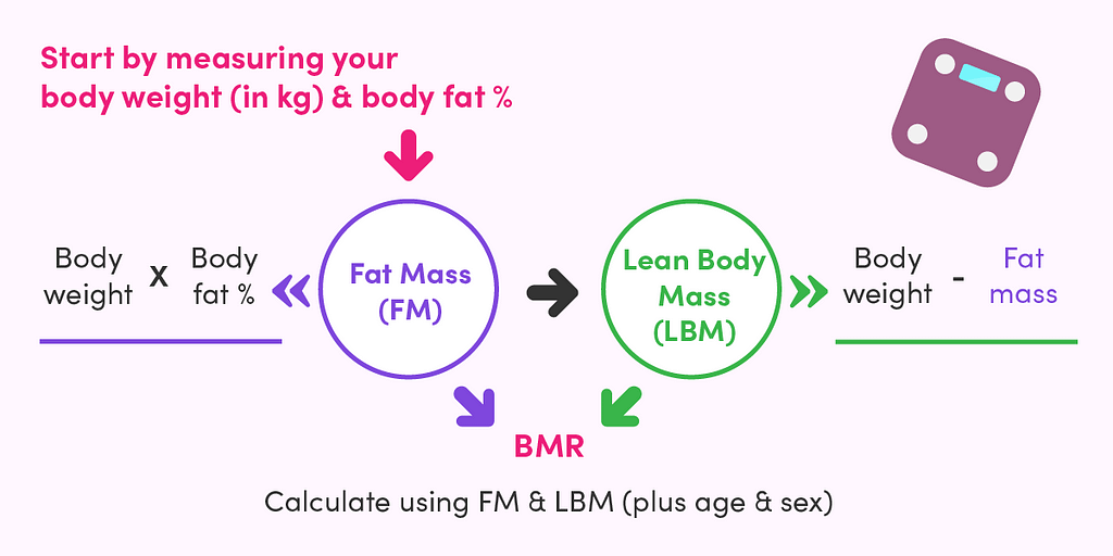 When it comes to 'how many calories should I eat a day,' you need to first calculate your BMR using the Müller equation. All you need to get started is your body weight and body fat percentage.