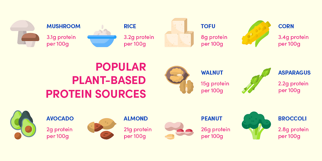 Popular plant-based protein sources you can include in your diet, whether or not you eat animal products.