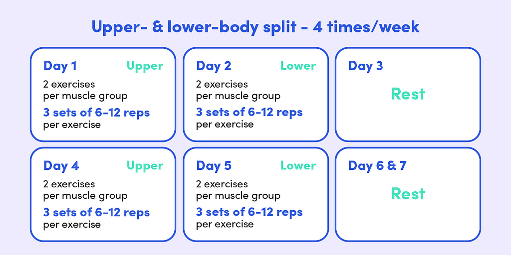 The upper- and lower-body split involves an upper-body day, followed by a lower-body day and a rest day. Each workout involves two exercises per muscle group.