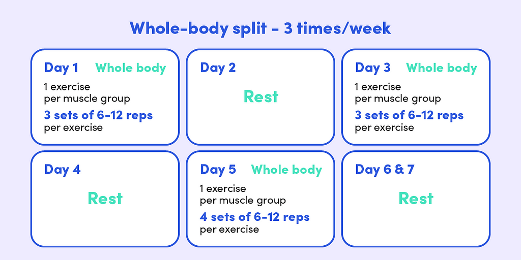The whole-body split involves a full body workout every other day. Each workout involves one exercise per muscle group.