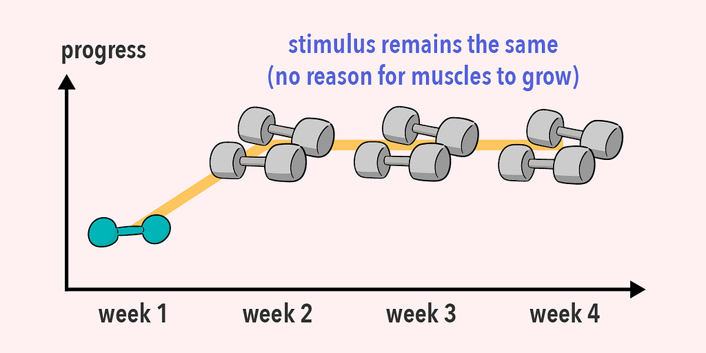 Without progressive overload, there's no stimulus for the muscles to grow bigger and stronger.